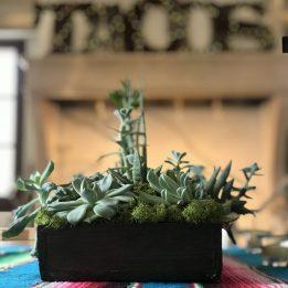 social_event_thumb (9)